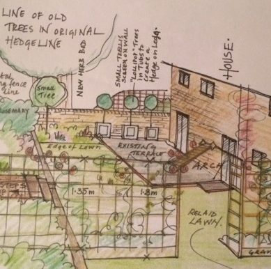Getting to grips with garden design