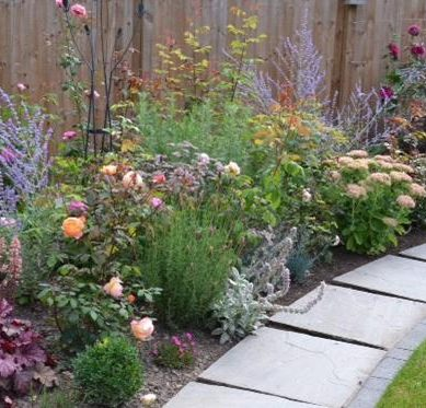 Gardening: Back to basics with borders