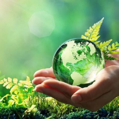 Rotherham Climate Action aims to build back better to protect our planet