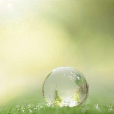 The season of sustainability